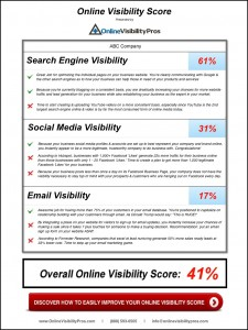 Online Visibility Scoring Software