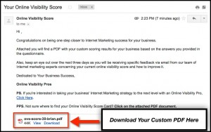 Download Your Online Visibility Score