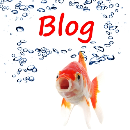 Starting A Business Blog Will Improve Your Social Media Marketing: Fact or Fiction?