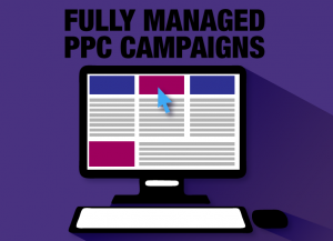 Fully Managed PPC Campaigns